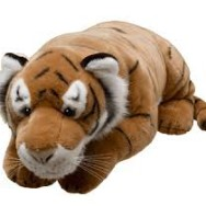 I Want My Tiger! ~ Using NVC with Toddlers